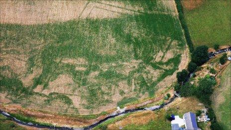 The outline of the Roman villa, spotted from the air