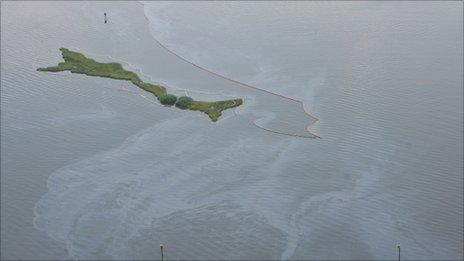 Visible residue of oil from the Deepwater Horizon disaster visible in Barataria Bay (Image AP)