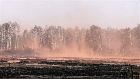 A burnt field near a village of Kadanok some 150 km outside Moscow