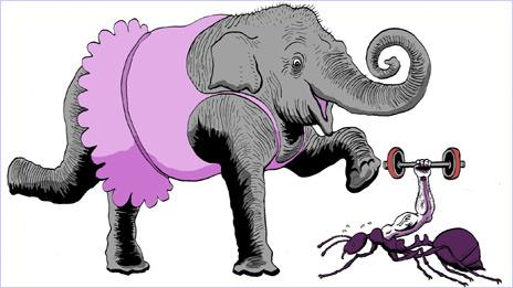 Graphic of an elephant and ant
