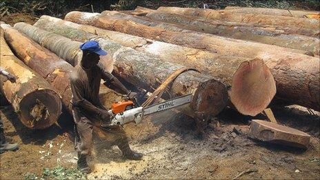 Liberian logger