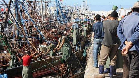 Fishermen at Laayoune port