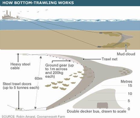 Schematic of bottom-trawling