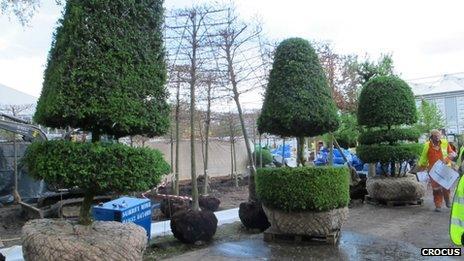Topiary sentinels - Chelsea 2012