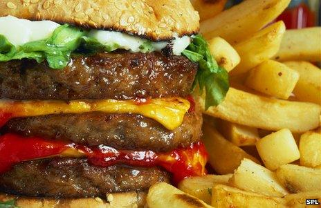 Huge cheeseburger and fries