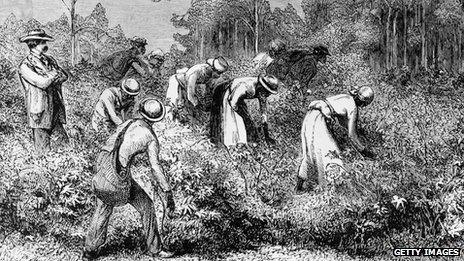 An image showing cotton pickers on a plantation circa 1875