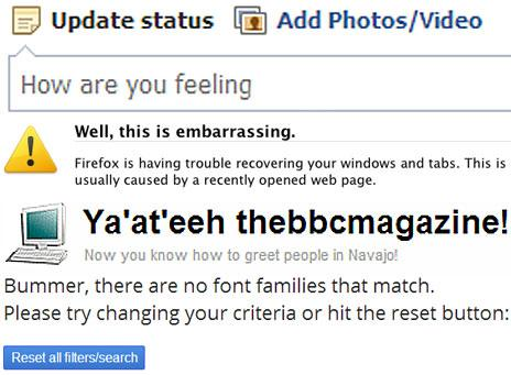 Screengrabs of Facebook, Flickr and so on