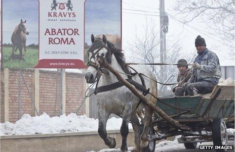 Romanian abbatoir