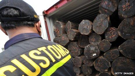It is believed that upgrading endangered species in Cites will make illegally logged wood more difficult to sell