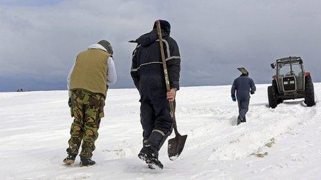 Workers in the snow