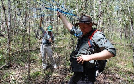 Wildlife biologists Jon Hanger (right) and Victoria Anderson use antennae to find koalas in a conservation reserve near Brisban