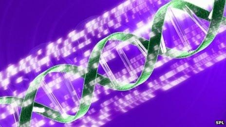 Conceptual computer artwork of a DNA (deoxyribonucleic acid) double helix