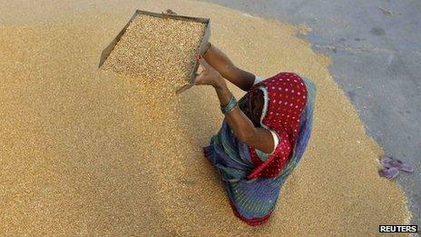 A woman winnows wheat crop at a wholesale grain market near the Indian city of Ahmedabad on 7 May 2013