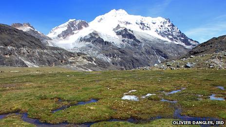 Bofedal facing Huayna Potosi in Bolivia