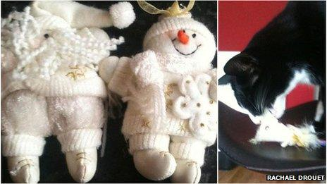 Toys stolen by a cat