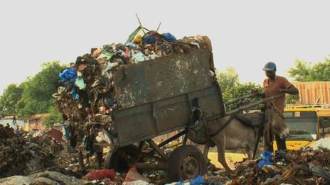 Donkeys tipping waste in Mali