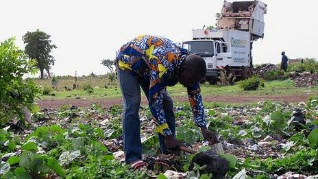 Bafing Traore farming with a Macrowaste truck in the background