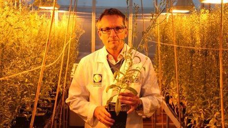 Michael Moseley GM crops