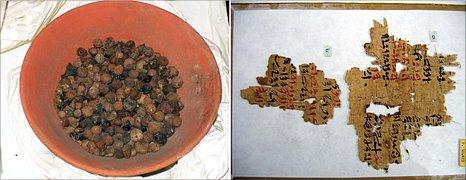 Seeds and papyrus from ancient Egypt