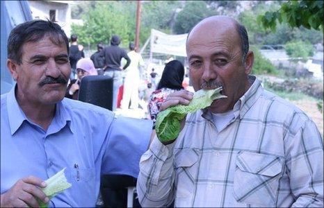 16th Festival of Lettuce, at a village near Bethlehem