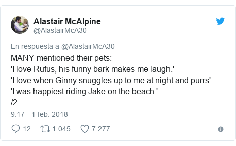 Publicación de Twitter por @AlastairMcA30: MANY mentioned their pets 'I love Rufus, his funny bark makes me laugh.''I love when Ginny snuggles up to me at night and purrs''I was happiest riding Jake on the beach.' /2