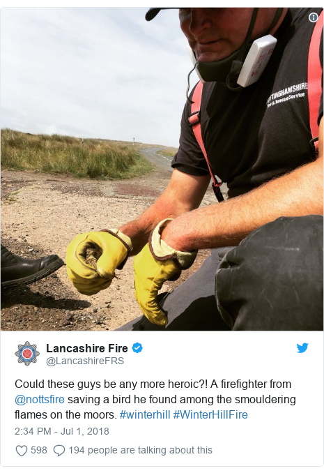 Twitter post by @LancashireFRS: Could these guys be any more heroic?! A firefighter from @nottsfire saving a bird he found among the smouldering flames on the moors. #winterhill #WinterHillFire