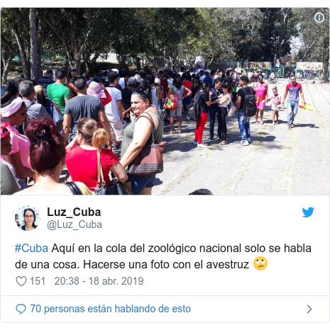 Publicación de Twitter por @Luz_Cuba: #Cuba Aquí en la cola del zoológico nacional solo se habla de una cosa. Hacerse una foto con el avestruz 🙄