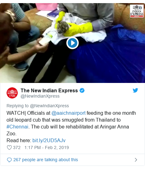 Twitter ubutumwa bwa @NewIndianXpress: WATCH| Officials at @aaichnairport feeding the one month old leopard cub that was smuggled from Thailand to #Chennai. The cub will be rehabilitated at Aringar Anna Zoo.Read here