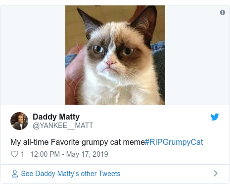 Twitter post by @YANKEE__MATT: My all-time Favorite grumpy cat meme#RIPGrumpyCat