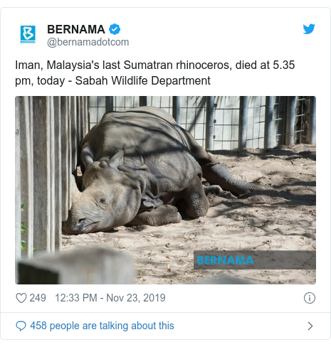 Twitter post by @bernamadotcom: Iman, Malaysia's last Sumatran rhinoceros, died at 5.35 pm, today - Sabah Wildlife Department