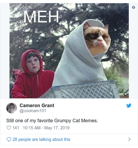 Twitter post by @coolcam101: Still one of my favorite Grumpy Cat Memes.