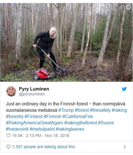 Twitter post by @pyryluminen: Just an ordinary day in the Finnish forest ~ Ihan normipäivä suomalaisessa metsässä #Trump #forest #firesafety #raking #forestry #Finland #Finnish #CaliforniaFire #RakingAmericaGreatAgain #rakingtheforest #Suomi #haravointi #metsäpalot #rakingleaves