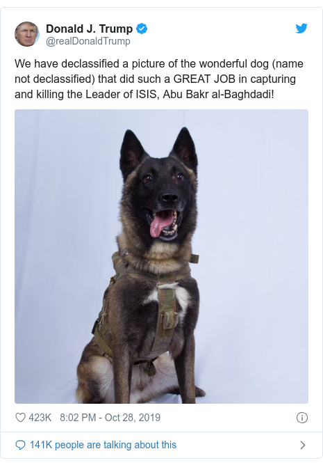 Twitter waxaa daabacay @realDonaldTrump: We have declassified a picture of the wonderful dog (name not declassified) that did such a GREAT JOB in capturing and killing the Leader of ISIS, Abu Bakr al-Baghdadi!