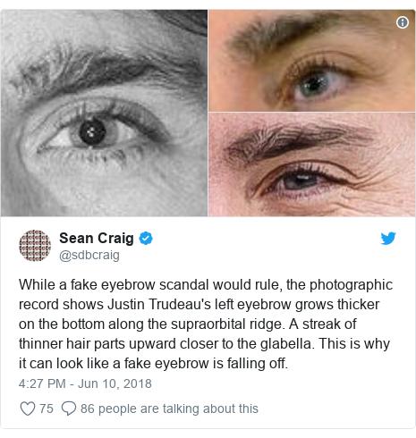 Hasil gambar untuk Does Justin Trudeau wear fake eyebrows?