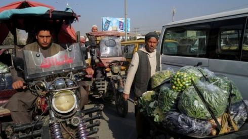 A man pushes wheelbarrow filled with vegetables and fruits at the market in Kabul, Afghanistan