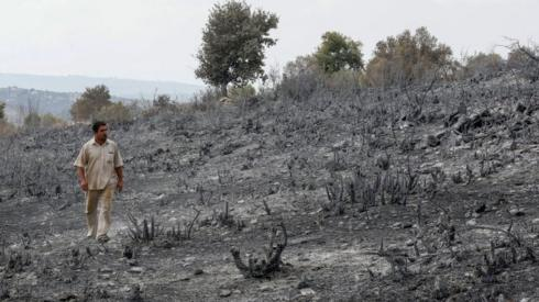 A man looks at burned farmland near Tartous, Syria (11 October 2020)3