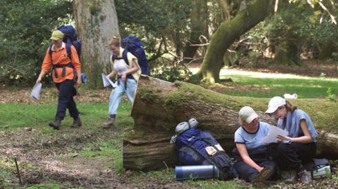 young people in New Forest national park