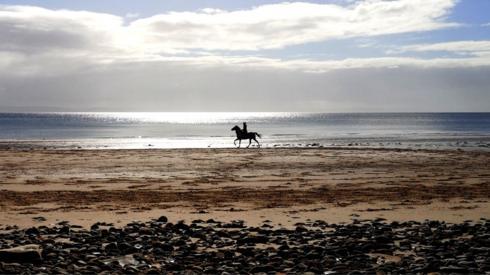 Horse and rider at Whiting Bay