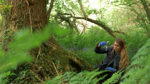 A young woman looking at a test tube in a forest