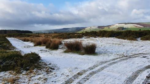 Snow on the ground in Llanbister