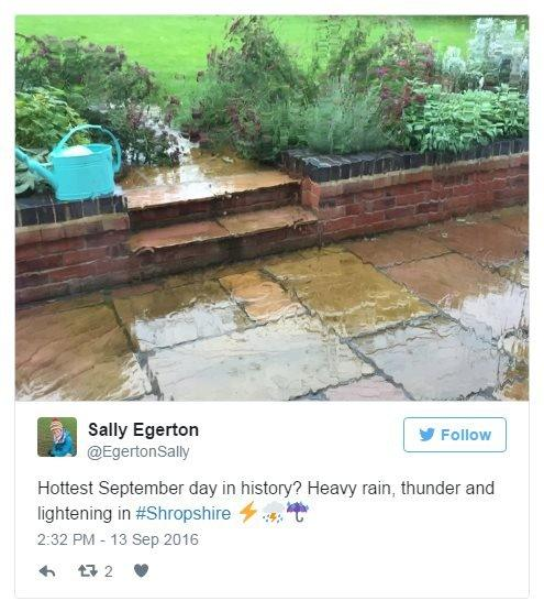 @EgertonSally on Twitter: Hottest day in history? Heavy rain, thunder and lightning in Shropshire. Photo: A soaked garden.