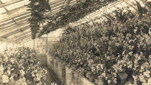 RHS Chiswick Garden