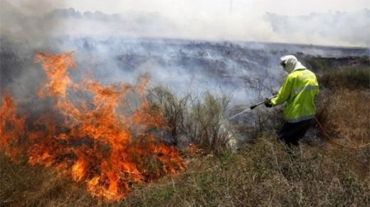 Flaming kites sent from Gaza during the protests have burnt 2,250 acres of land in Israel