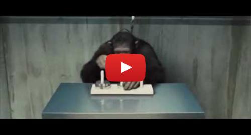 Publicación de Youtube por Doddle: Lucas Tower - Rise of the planet of the Apes