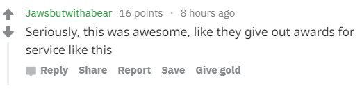 """Reddit comment reading: """"Seriously, this was awesome, like they give out awards for service like this"""""""