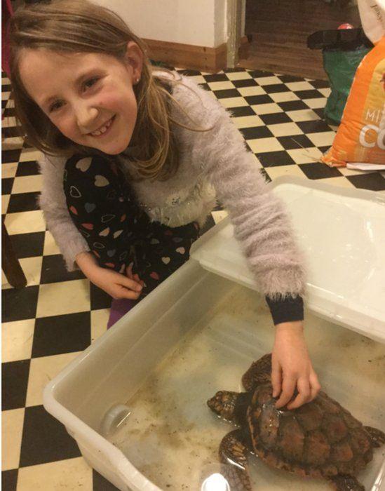 Nine-year-old Síomha helped bathe the stricken turtle in seawater