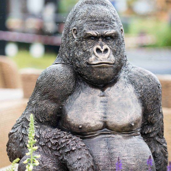 A gorilla at the Chatsworth Show