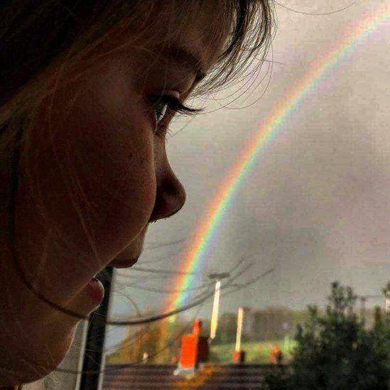 Bo looking at a rainbow