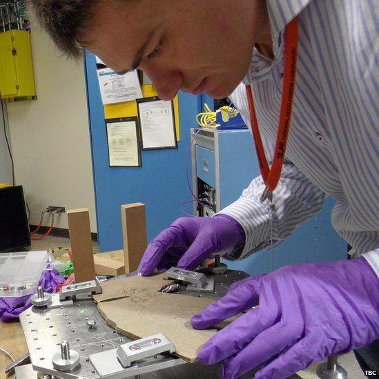 Fabien Knoll examines the fossil