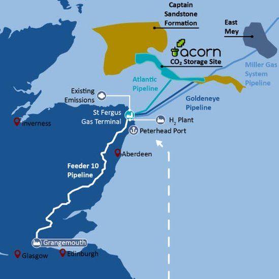 Acorn Project